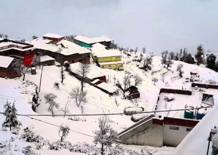 Discover Dalhousie Package