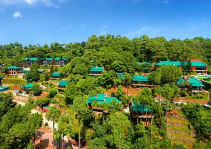 Fascinating Kasauli Honeymoon